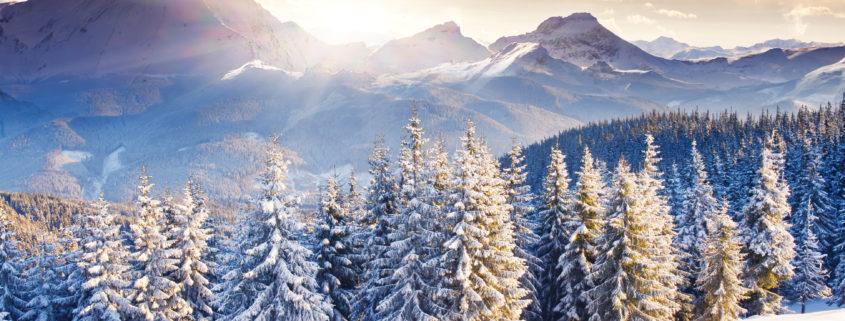 Lommebog's filosofi om skiløb som aktivitet for virksomheder